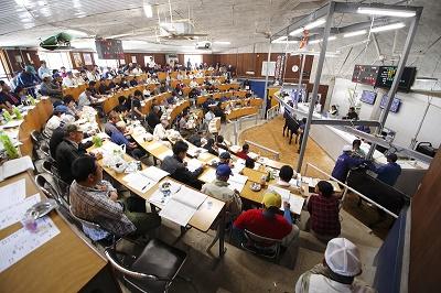 球磨畜産農業協同組合 セリ市